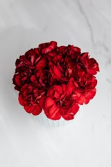 Bouquet_of_Red_Carnations
